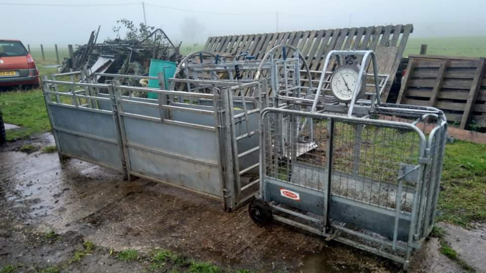 Lucky Ewe Donations - Cupar